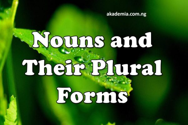 Nouns and their Plural Forms