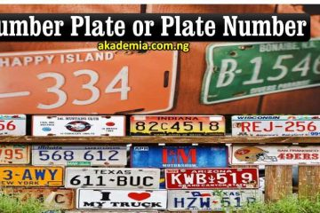 Number Plate or Plate Number