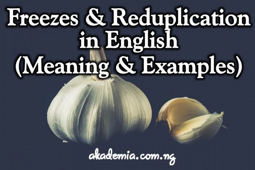 Freezes and Reduplication in English (Meaning and Examples)