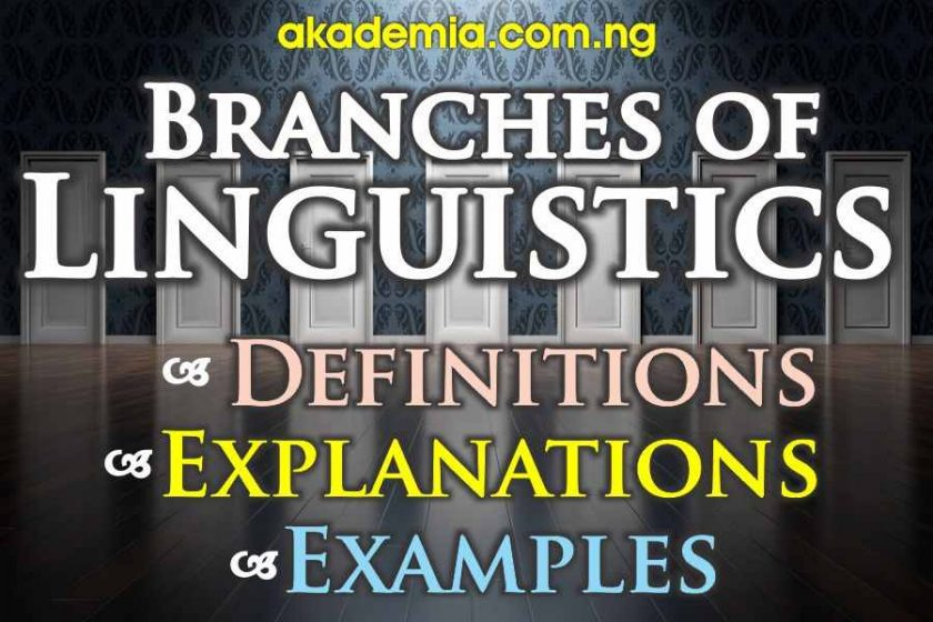 Branches of Linguistics (with Definitions, Explanations and Examples)